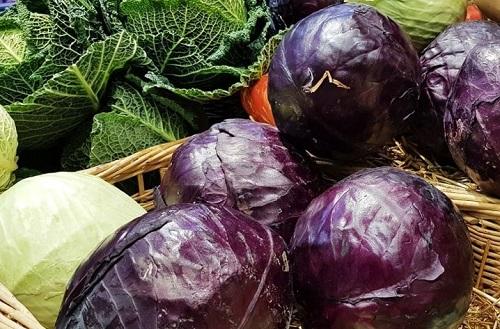 Vad är ett livsmedelssystem?