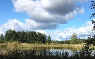 Skapa ett cirkulärt livsmedelssystem i Saltvik, del 1