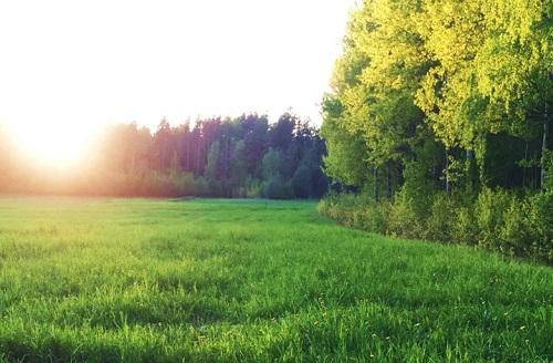 Skapa ett cirkulärt livsmedelssystem i Saltvik, del 3