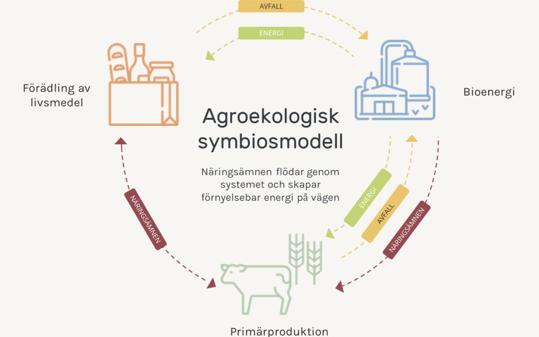 Vad är agroekologisk symbios?